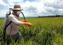 Проблема с устаревшими пестицидами