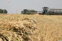 МФИ в Азербайджане активны по всем направлениям