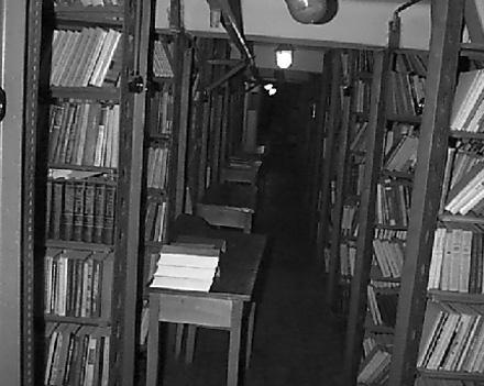Библиотекарей научат