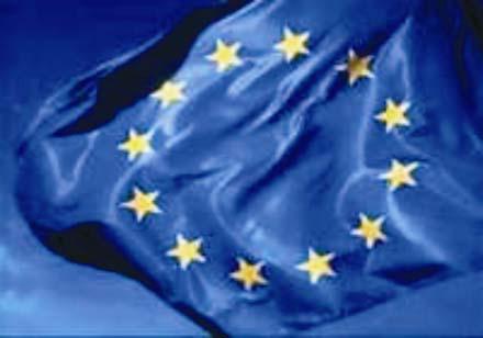 Европарламент прав, уверена Общественная палата