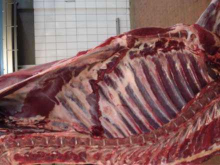 Мясо не роскошь?