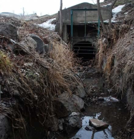 В Ереване уничтожаются сотни гектаров уникальных фруктовых садов,