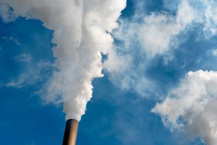 Чему научились активисты по климату?