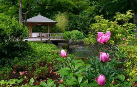 Сад - долгая и добрая память